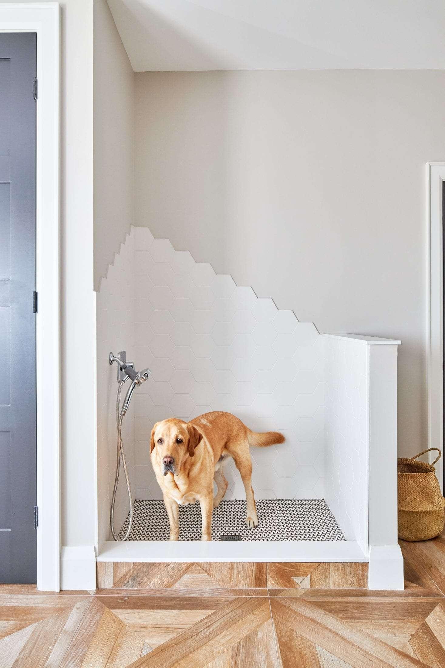 Country farmhouse dog shower design unique tile design